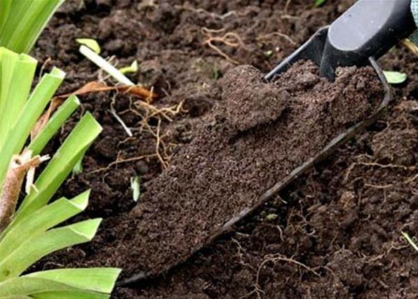 физические свойства почвы