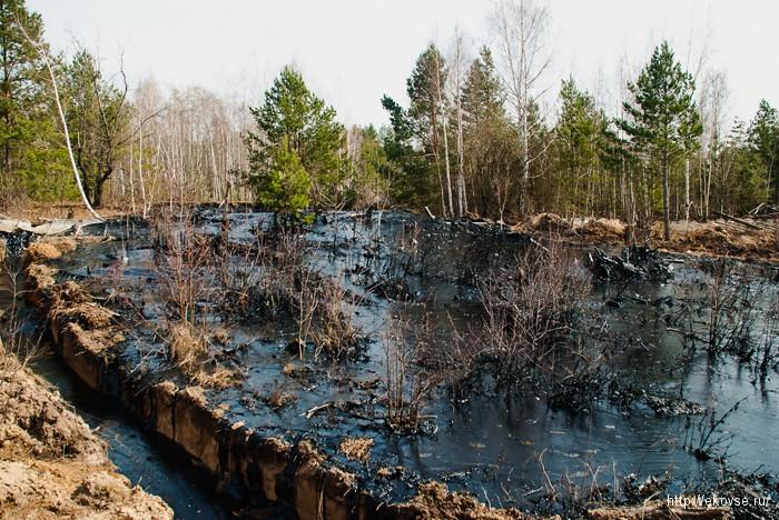 ликвидация нефтезагрязнений