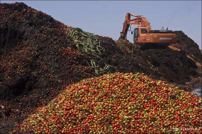 утилизация фруктов и овощей