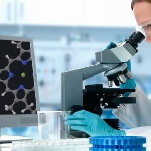 разработка биопроектов профессионалами